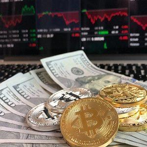 По каким критериям выбирать биржу криптовалют?